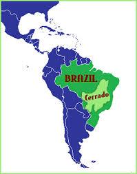 Бразилия Мицуи Сантос