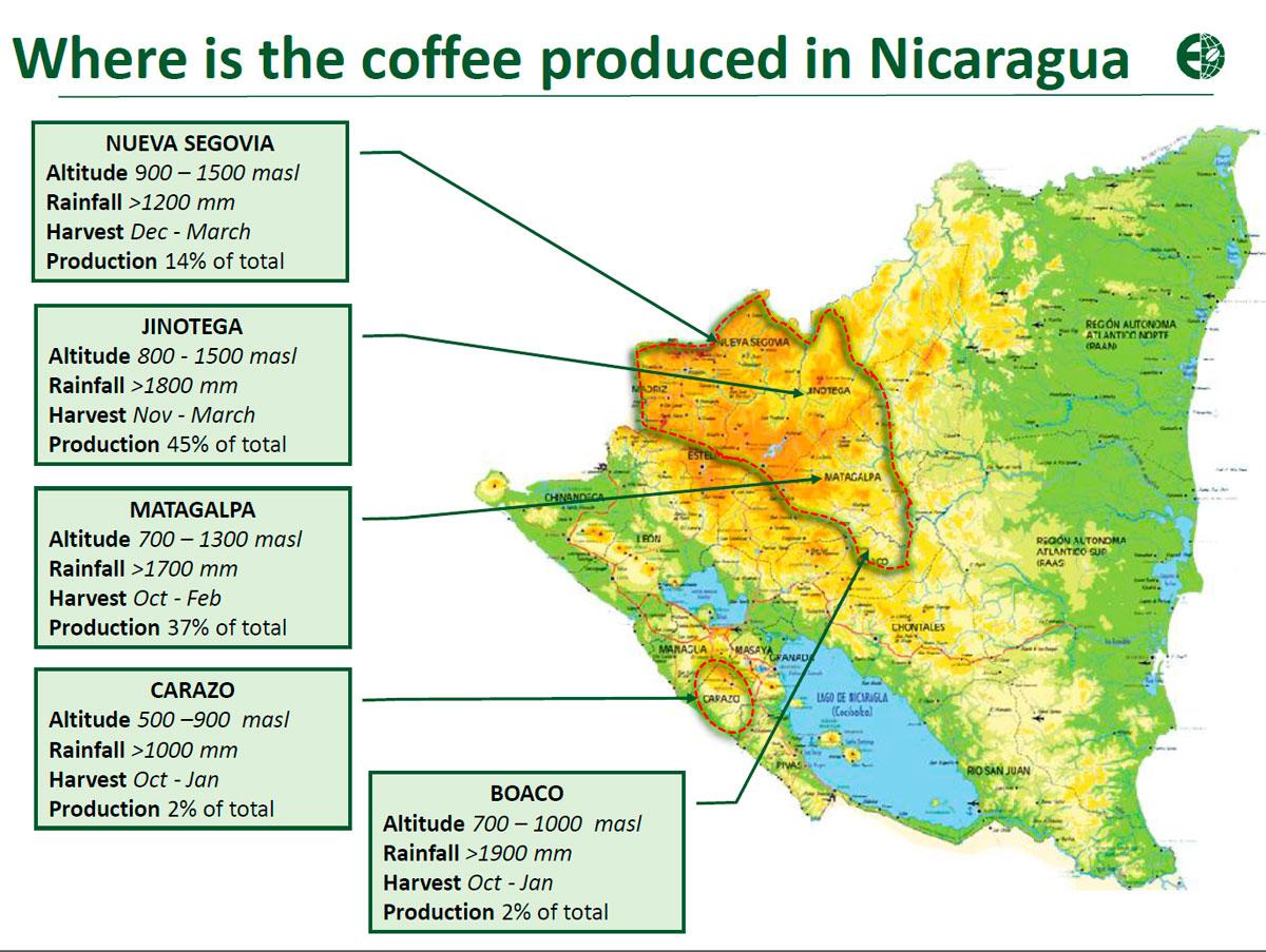 Кофейные регионы Никарагуа