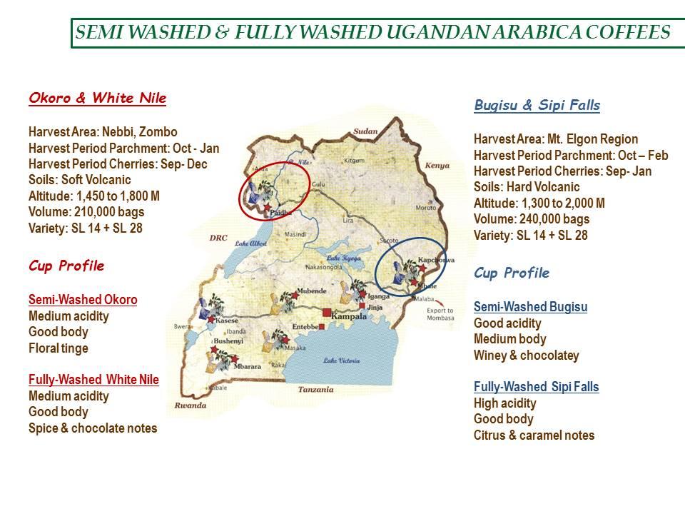 География производства мытой арабики в Уганде